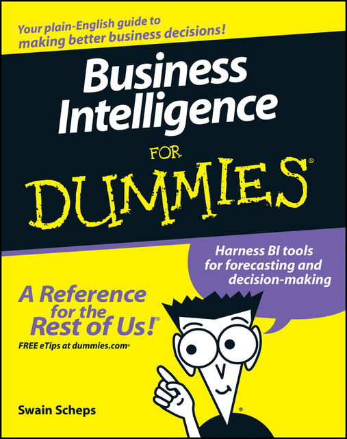 Business Intelligence For Dummies, Swain Scheps