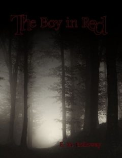 The Boy In Red, E.M. Holloway