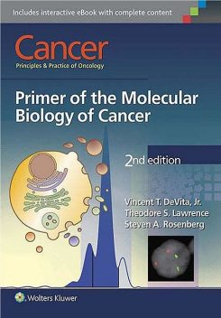 Cancer Principles and Practice of Oncology: Primer of the Molecular Biology of Cancer Second Edition, Steven, J.R., Theodore, Rosenberg, Vincent, Lawrence, DeVita