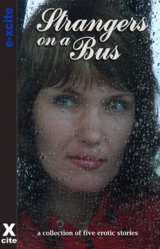 Strangers on a Bus, Cathryn Cooper, Landon Dixon, Jade Taylor, Sally Quilford, Nicky B