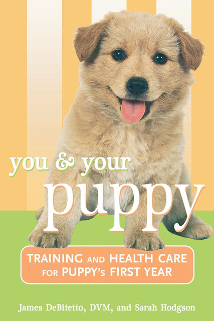 You and Your Puppy, Sarah Hodgson, James DeBitetto