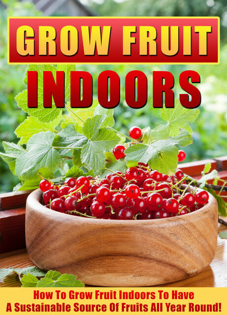 Grow Fruit Indoors How To Grow Fruit Indoors To Have A Sustainable Source Of Fruits All Year Round, Old Natural Ways