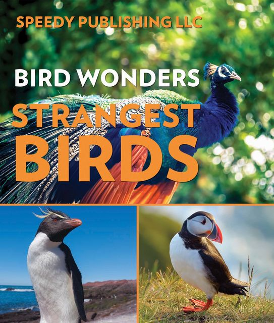 Bird Wonders – Strangest Birds, Speedy Publishing