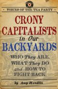Crony Capitalists in Our Backyards, Amy Handlin