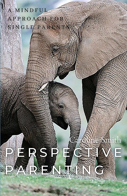Perspective Parenting: A Mindful Approach for Single Parents, Caroline Smith
