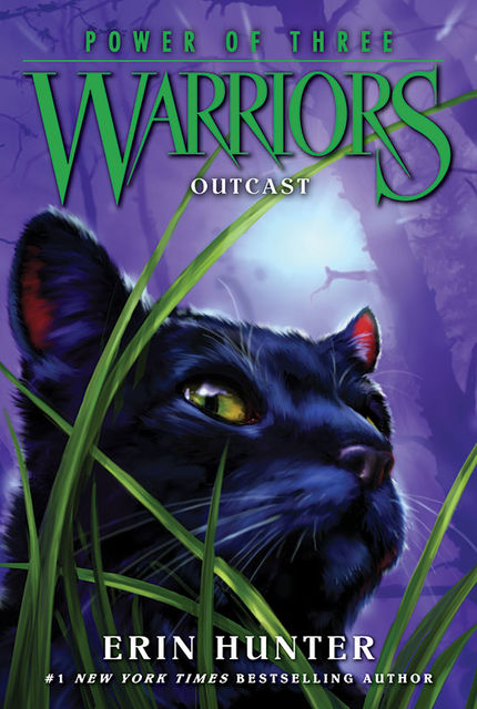 Warriors: Power of Three #3: Outcast, Erin Hunter