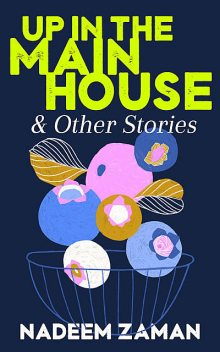 Up in the Main House & Other Stories, Nadeem Zaman