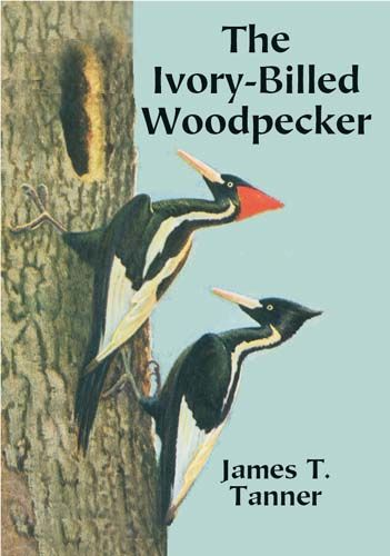 The Ivory-Billed Woodpecker, James T.Tanner