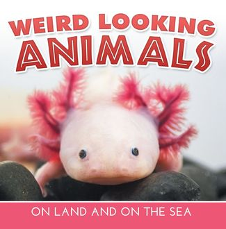 Weird Looking Animals On Land and On The Sea, Baby Professor
