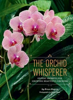 The Orchid Whisperer, Bruce Rogers