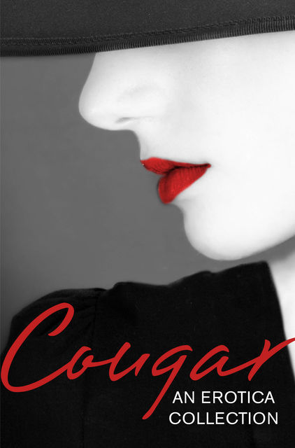 Cougar: An Erotica Collection, Elizabeth Coldwell, Lily Harlem, Primula Bond, Giselle Renarde, Heather Towne, Kathleen Tudor, Chrissie Bentley, Tenille Brown, Kyoko Church, Sandra Stevens