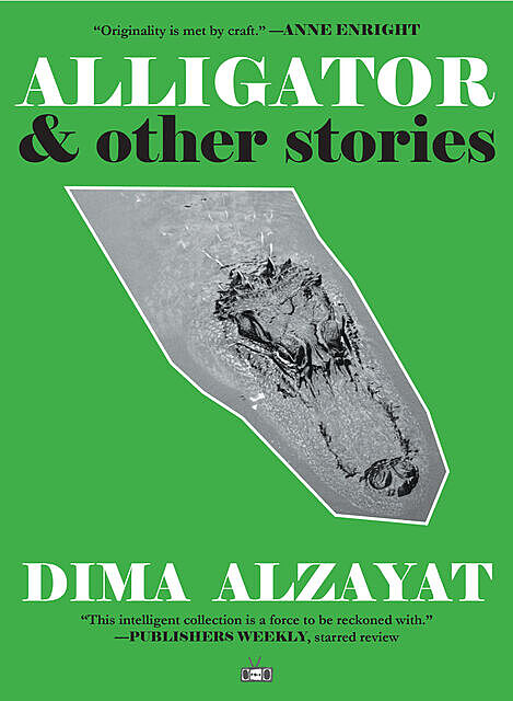 Alligator, Dima Alzayat