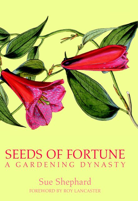 Seeds of Fortune, Sue Shephard