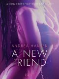 A New Friend – Sexy erotica, Andrea Hansen