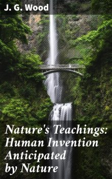 Nature's Teachings: Human Invention Anticipated by Nature, J.G. Wood