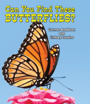 Can You Find These Butterflies?, Carmen Bredeson, Lindsey Cousins