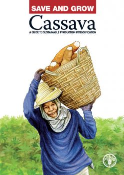 Save and Grow: Cassava, Agriculture Organization of the United Nations of the United Nations, Food