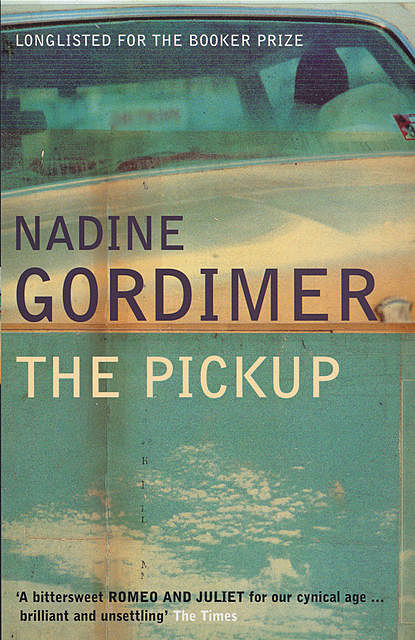The Pickup, Nadine Gordimer