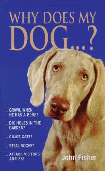 Why Does My Dog?, John Fisher