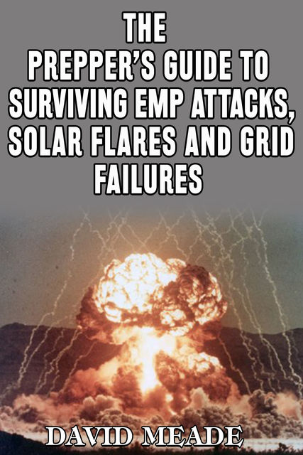 The Prepper's Guide to Surviving EMP Attacks, Solar Flares and Grid Failures, David Meade