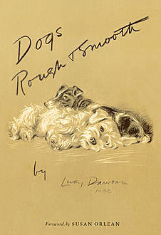 Dogs Rough and Smooth, Lucy Dawson