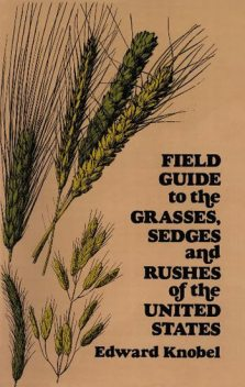 Field Guide to the Grasses, Sedges, and Rushes of the United States, Edward Knobel