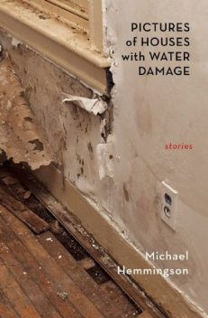 Pictures of Houses with Water Damage: Stories, Michael Hemmingson