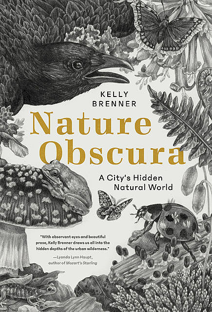 Nature Obscura, Kelly Brenner