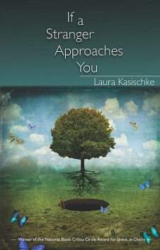 If a Stranger Approaches You, Laura Kasischke