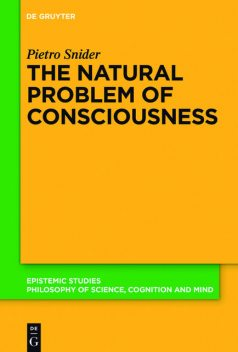 The Natural Problem of Consciousness, Pietro Snider