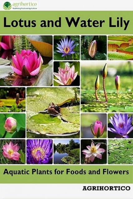 Lotus and Water Lily, Agrihortico CPL