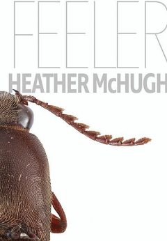 Feeler, Heather McHugh