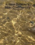 A New Believer's Bible Commentary: The Prophets, Judy Barrett