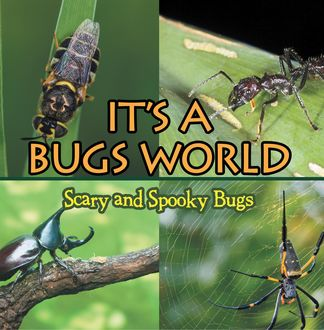 Its A Bugs World: Scary and Spooky Bugs, Baby Professor