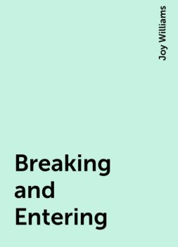 Breaking and Entering, Joy Williams