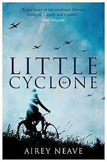 Little Cyclone, Airey Neave