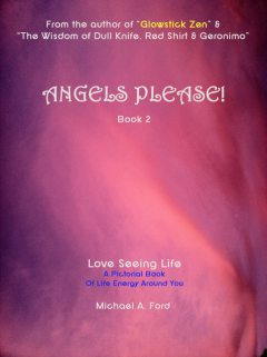 Angels Please! (Book 2), Michael A Ford