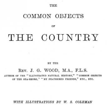 The Common Objects of the Country, J.G. Wood