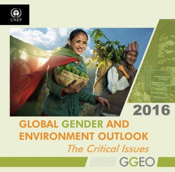 Global Gender and Environment Outlook 2016: The Critical Issues, United Nations Environment Programme