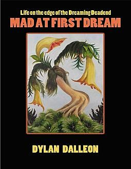 Mad At First Dream, Dylan Dalleon
