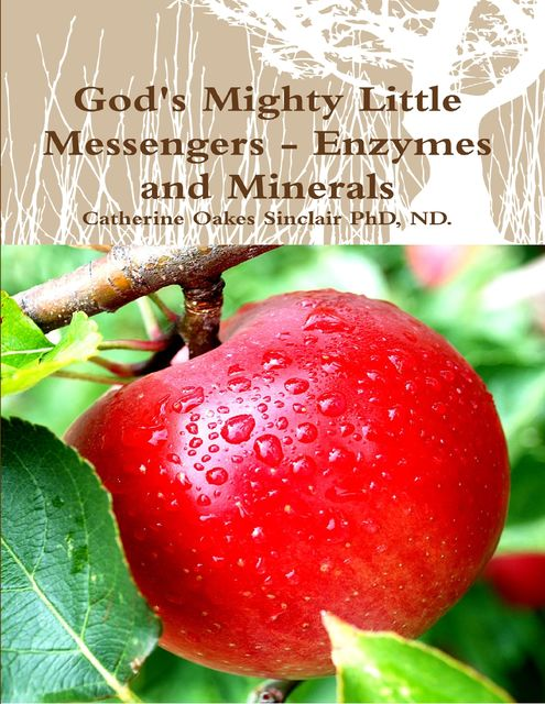 God's Mighty Little Messengers – Enzymes and Minerals, Catherine Sinclair, NDphys., ND