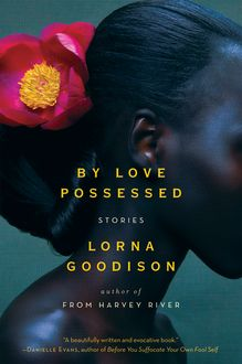 By Love Possessed, Lorna Goodison