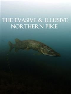 Eco Alert Invasive Species Northern Pike, Polly Peacock