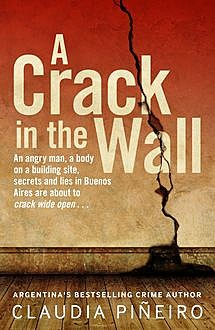 A Crack in the Wall, Claudia Piñeiro