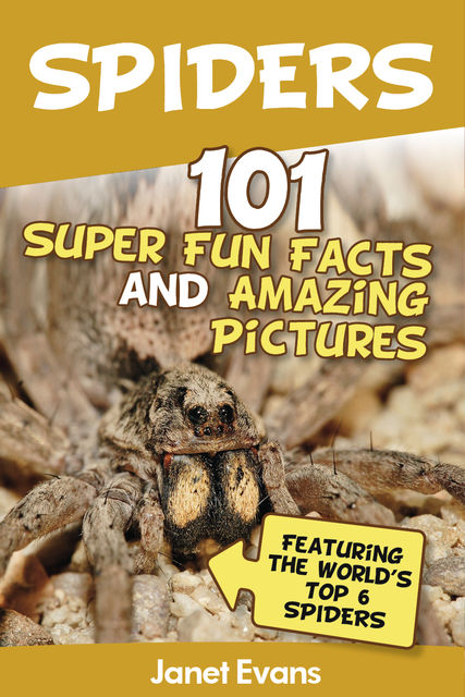 Spiders:101 Fun Facts & Amazing Pictures ( Featuring The World'd Top 6 Spiders), Janet Evans