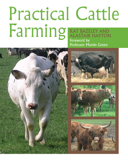 Practical Cattle Farming, Alastair Hayton, Kat Bazeley