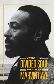 Divided Soul: The Life Of Marvin Gaye, David Ritz