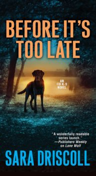 Before It's Too Late, Sara Driscoll
