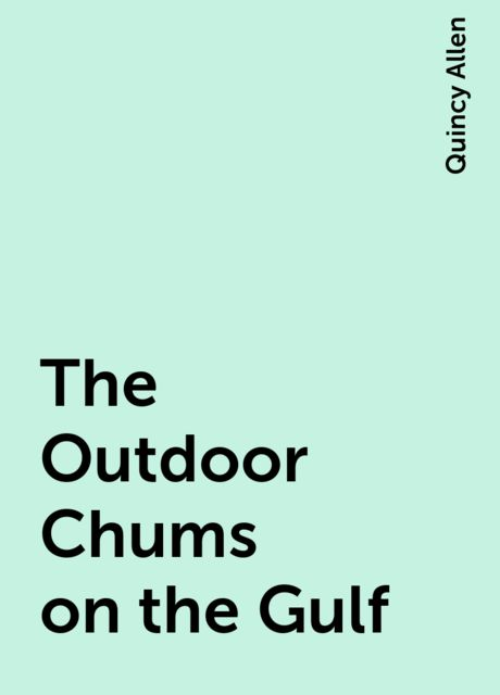 The Outdoor Chums on the Gulf, Quincy Allen