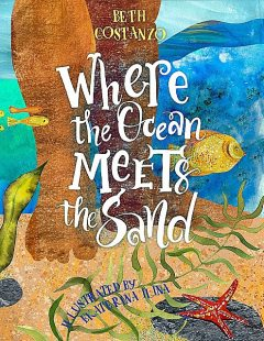 Where the Ocean Meets the Sand, Beth Costanzo